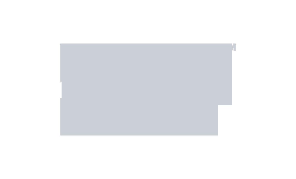 LEVVEL