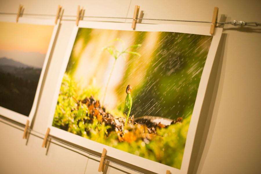 Detaljbild fotografer bygger om studion till kontorshotell, Pryder sina väggar med bilder