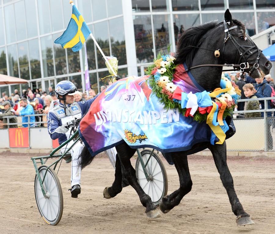 Oskar J Andersson. Trav. Sala. Travsport. Hästägare.