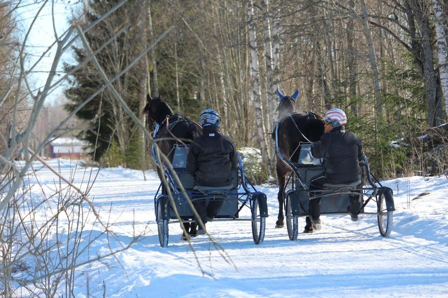 OJA Racing är ett familjeföretag i Sala där Oskar J Andersson är travtränare.