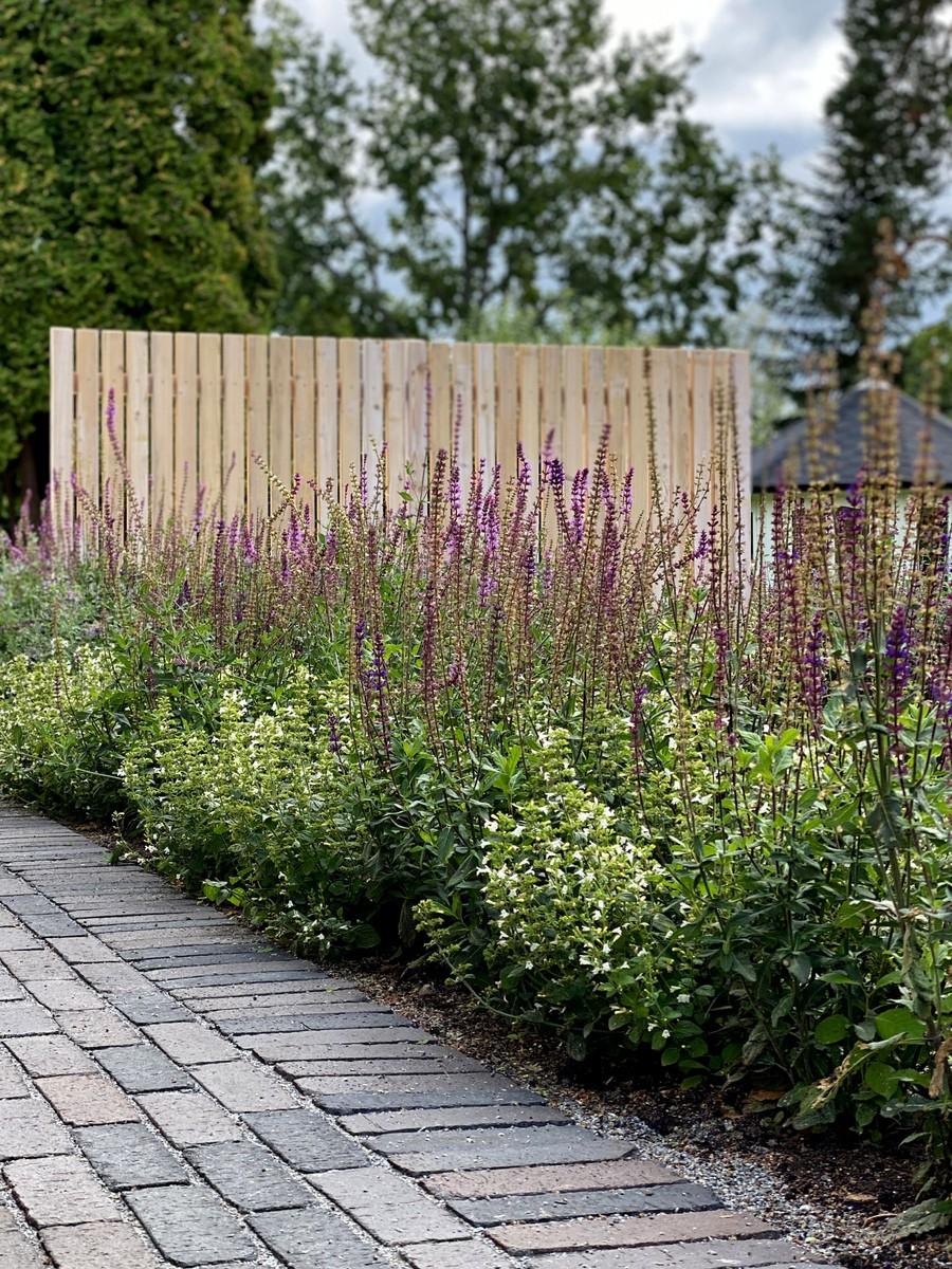 Wägerths trädgårdsdesign marktegel trädgårdsplanering  trädgård plantering tegelgång organowood plank kantnepeta stäppsalvia