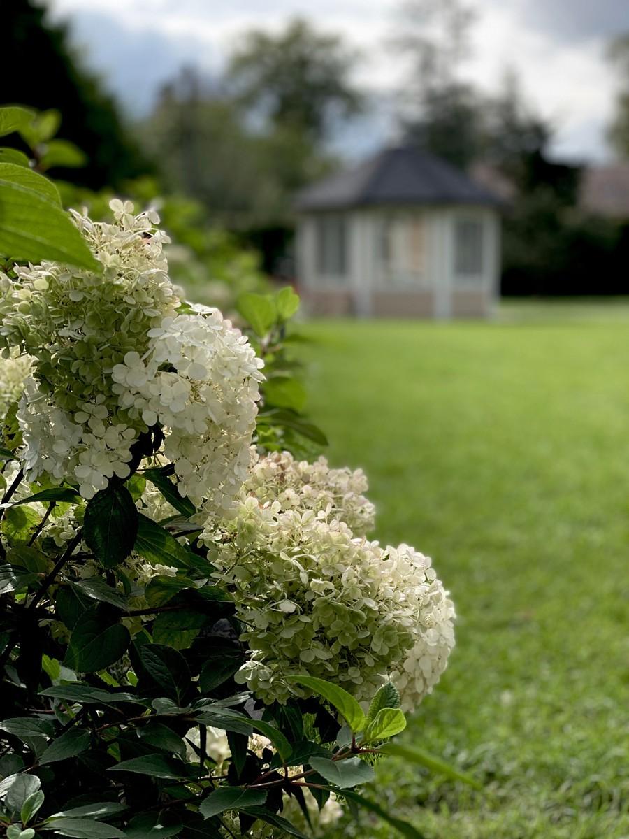 Wägerths trädgårdsdesign  trädgårdsplanering  trädgård plantering lusthus hortensia