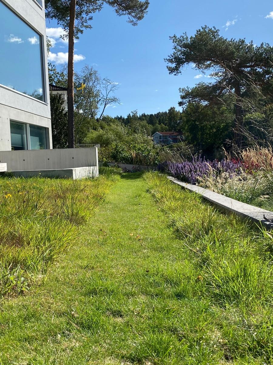 Wägerths trädgårdsdesign trädgårdsarkitekt design trädgård modernt hus naturlig plantering