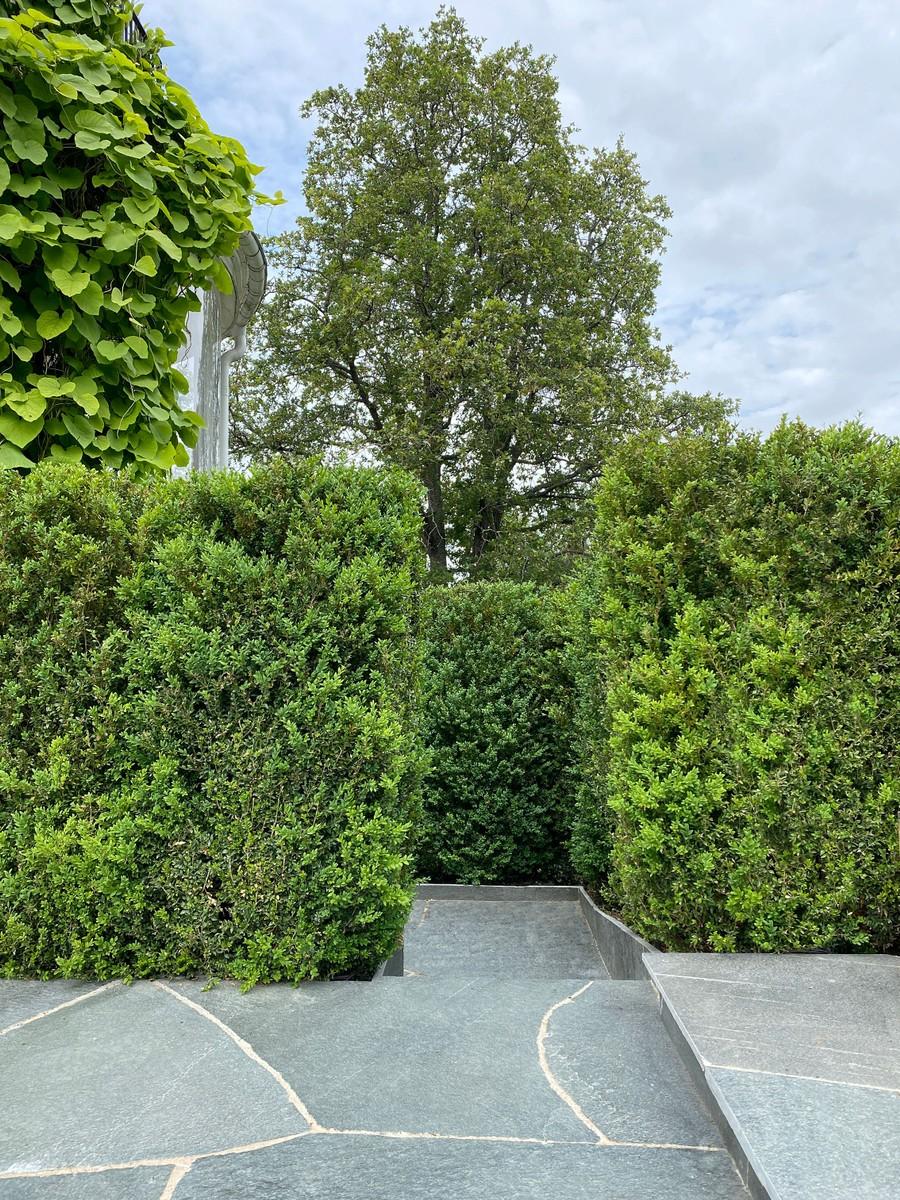 Wägerths trädgårdsdesign trädgårdsarkitekt buxbomhäck skiffer offerdalsskiffer lyxig uteplats stenläggning