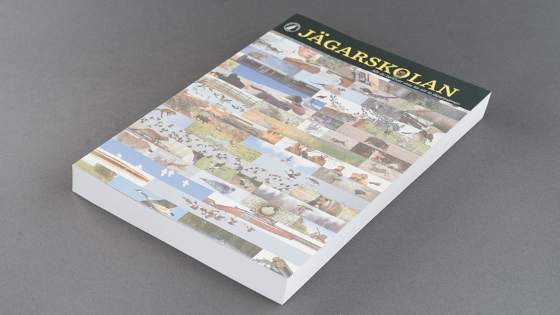 Linnetrådsbunden katalog